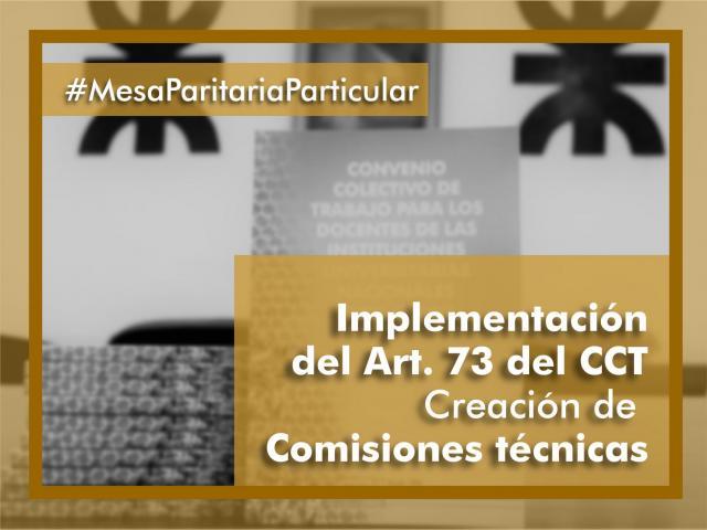 Implementación Art.73